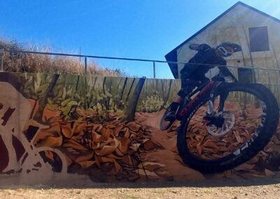 Ruta de grafitis en El Bierzo León en Pobladura de las Regueras