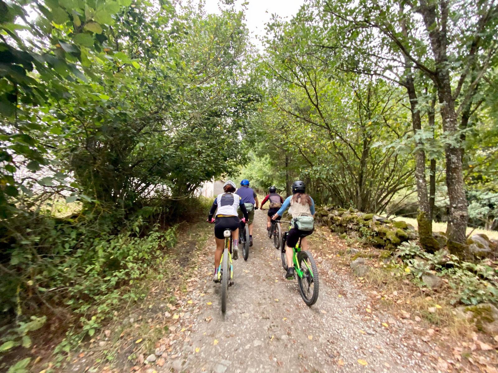 Alquiler de bicicletas eléctricas ebike mountain bike | Rutas para grupos en El Bierzo