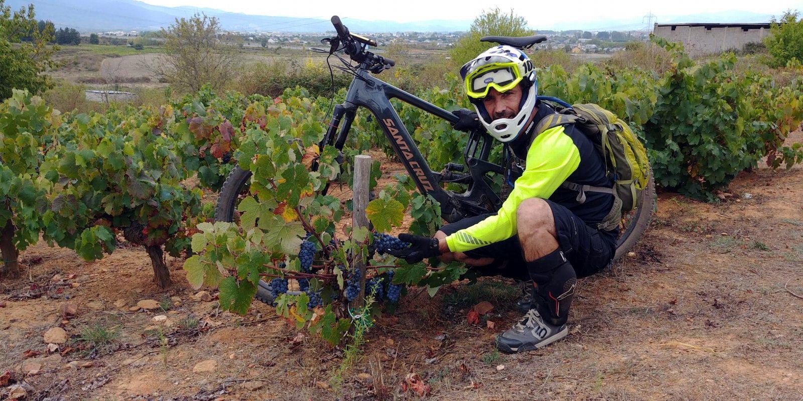 Alquiler de bicicletas eléctricas ebike mountain bike | Rutas enológicas por viñedos en El Bierzo
