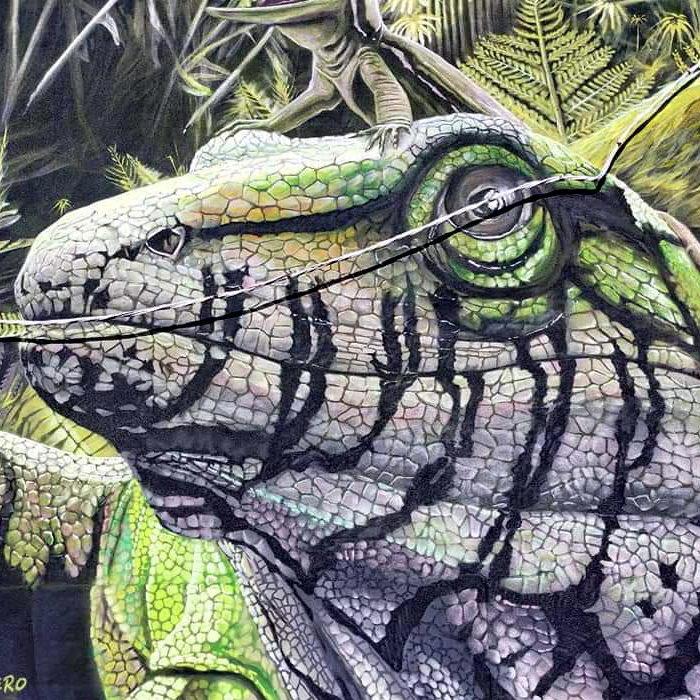 Grafiti de los Dinosaurios | Ruta de los grafitis en El Bierzo | Tremor de Arriba